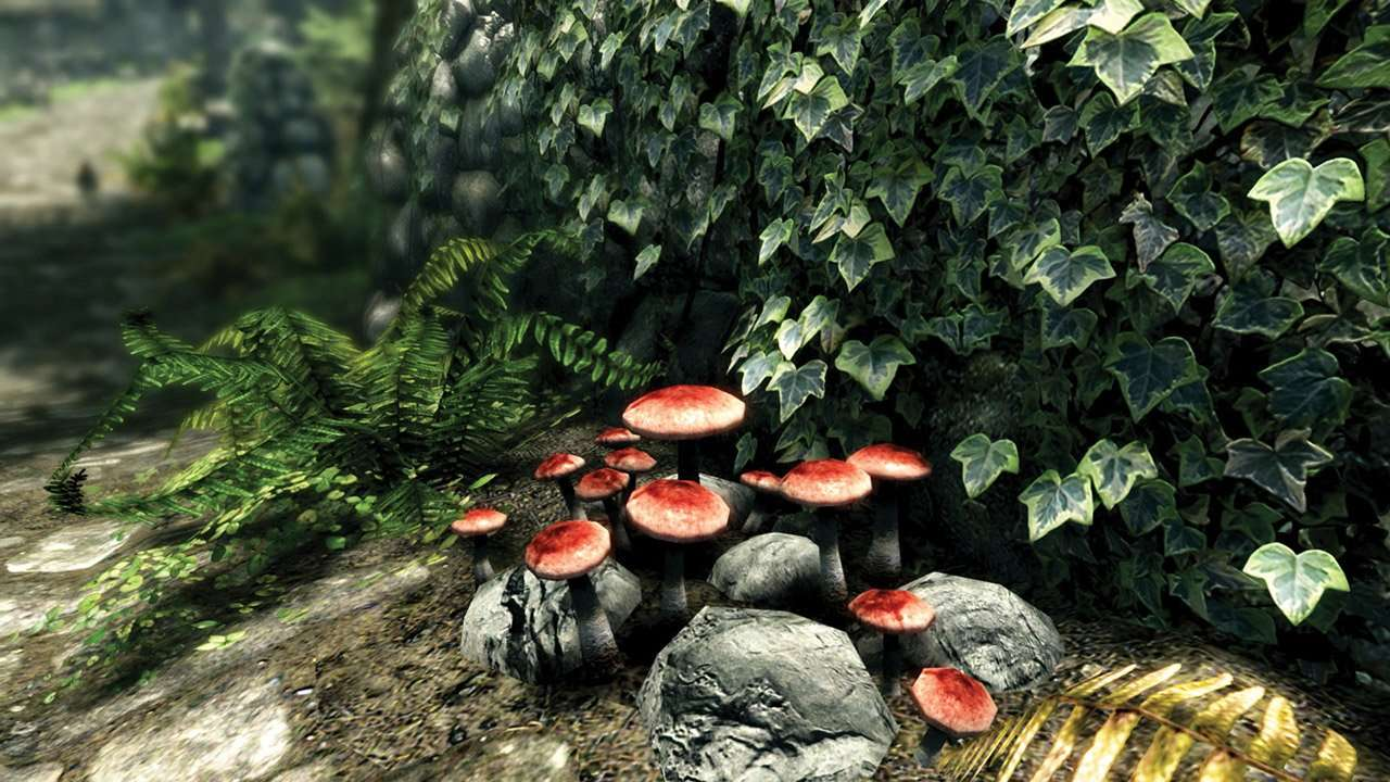 skyrim mushrooms