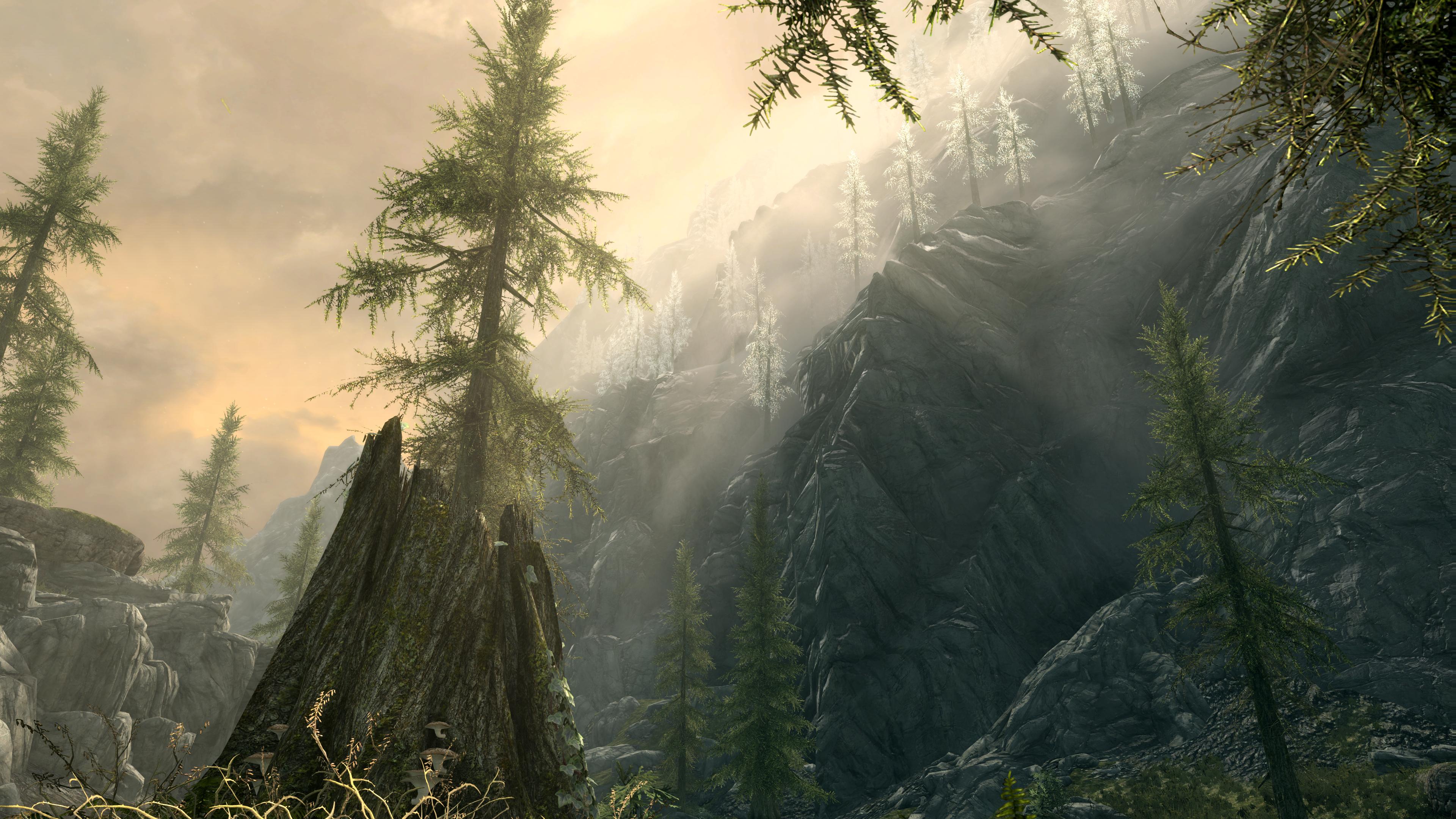 The Elder Scrolls V Skyrim Special Edition ethereal god rays